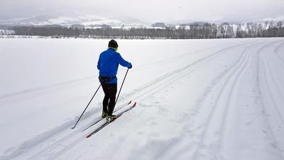 Galeria Szlaki narciarstwa biegowego w Głuchołazach
