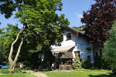 Galeria Niebieski Domek